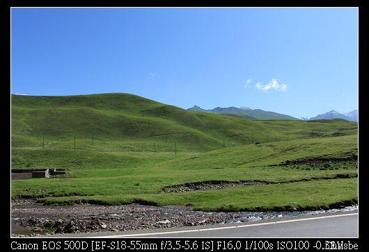山綠得像地毯一樣