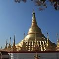 緬甸--大金寺1