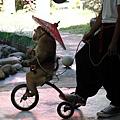 猴子騎車撐小紅傘