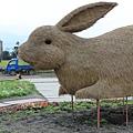 0223稻草做的大兔子
