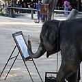 精采的大象畫畫