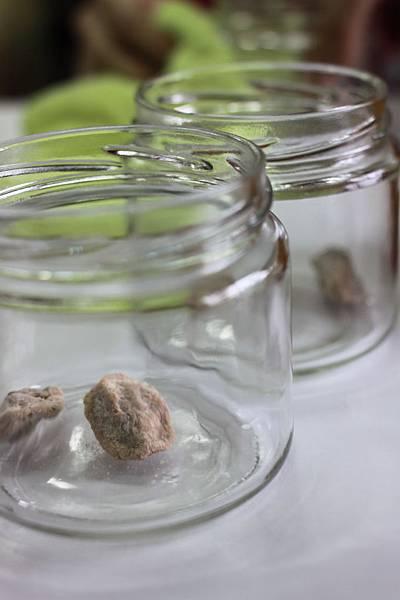 0121DIY蜜金棗. 在空瓶裡放梅子