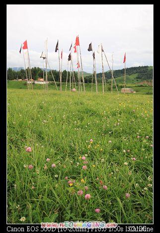 草原上的旗幟