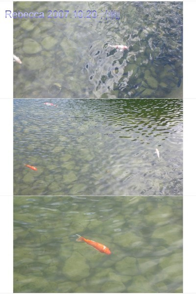 2007.10.20 沖繩(26)-1.jpg