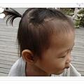 2008.10.26 新社古堡 (5).jpg