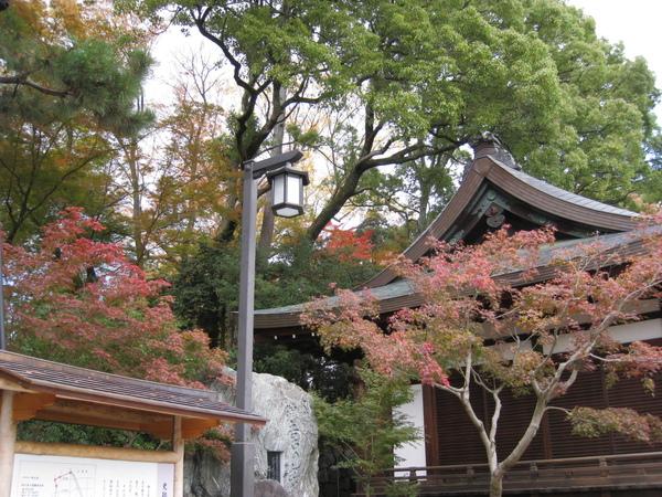 2008.11.25 京都--北野天滿宮 (30).JPG