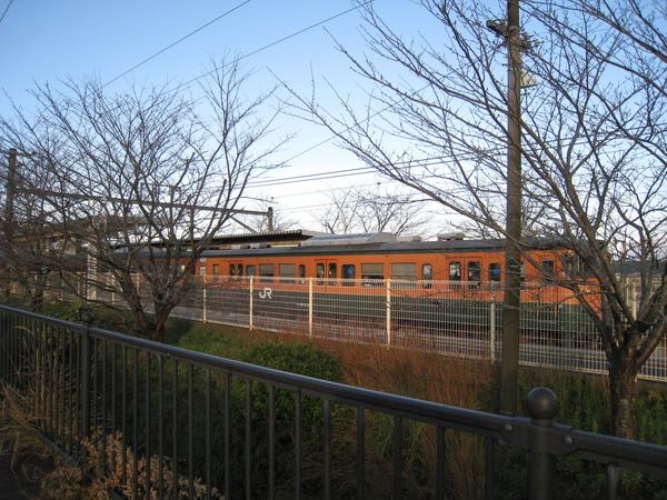 2008.11.25 京都--嵐山 (3).JPG