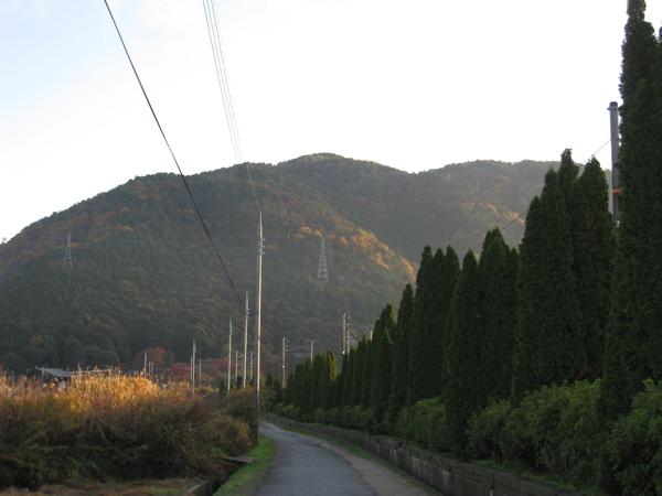 2008.11.25 京都--嵐山 (13).JPG