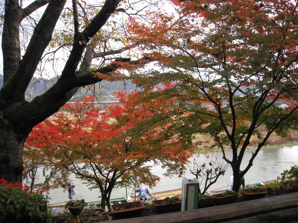 2008.11.25 京都--嵐山 (35).JPG