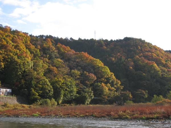 2008.11.25 京都--嵐山 (54).JPG