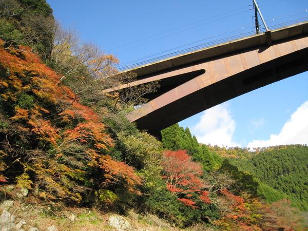 2008.11.25 京都--嵐山 (137).JPG