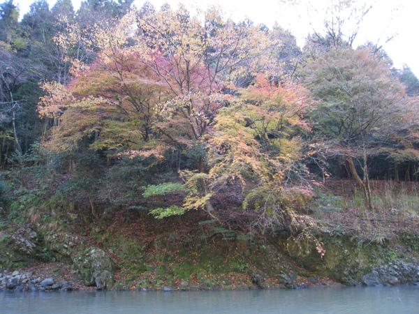 2008.11.25 京都--嵐山 (142).JPG