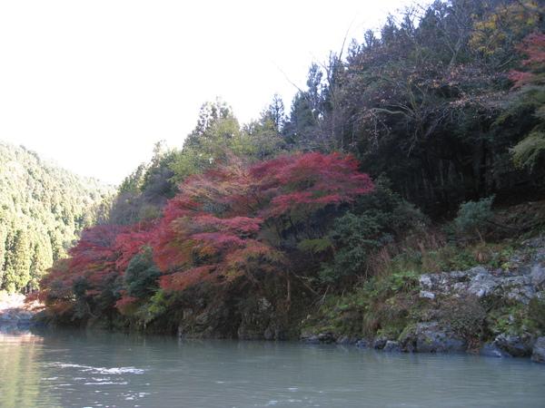 2008.11.25 京都--嵐山 (144).JPG