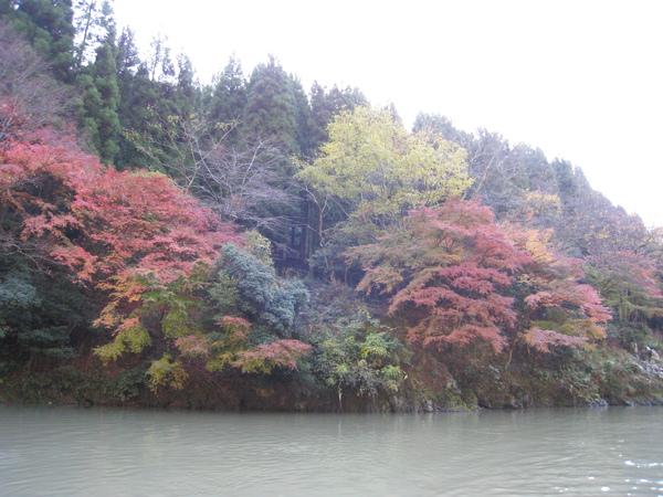 2008.11.25 京都--嵐山 (147).JPG
