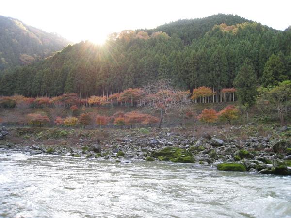 2008.11.25 京都--嵐山 (174).JPG