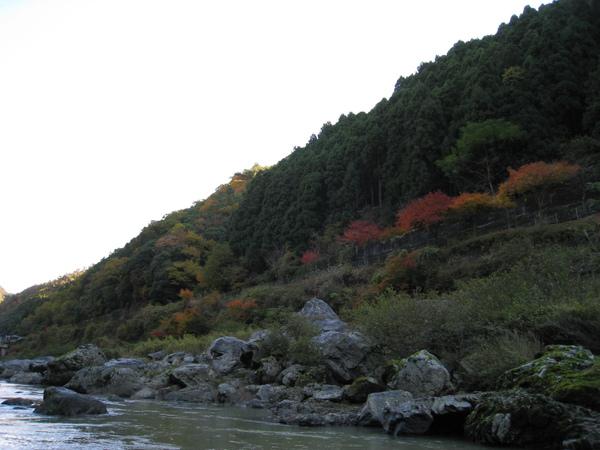 2008.11.25 京都--嵐山 (206).JPG