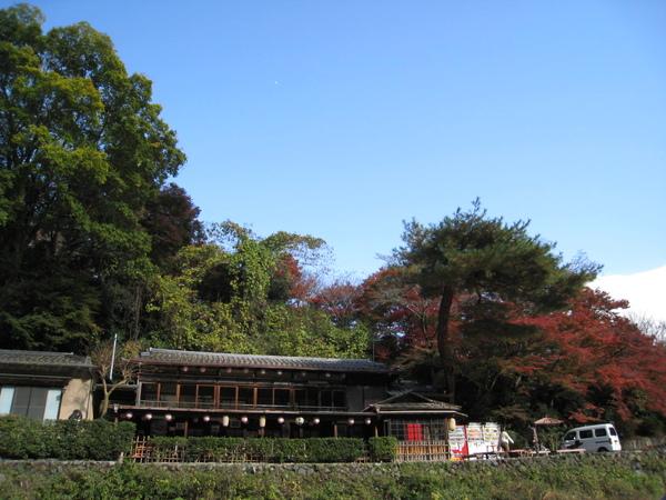 2008.11.25 京都--嵐山 (249).JPG