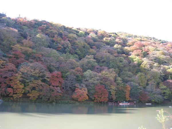 2008.11.25 京都--嵐山 (250).JPG