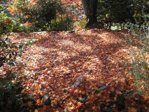 2008.11.25 京都--嵐山 (261).JPG