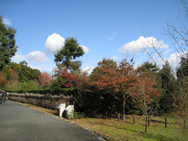2008.11.25 京都--嵐山 (273).JPG