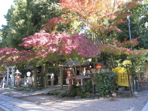 2008.11.26 京都--八坂神社 (14).JPG