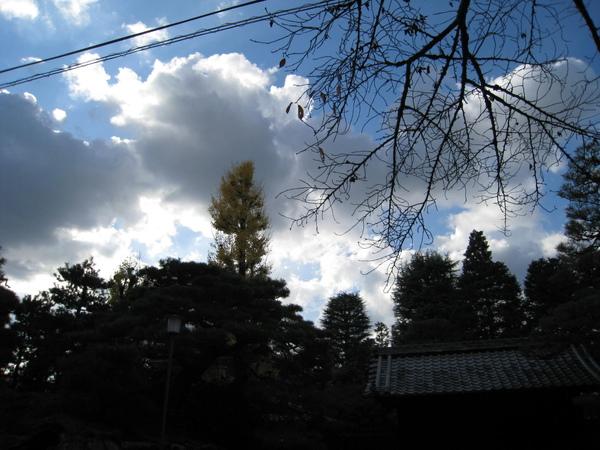 2008.11.26 京都--永觀堂 (10).JPG