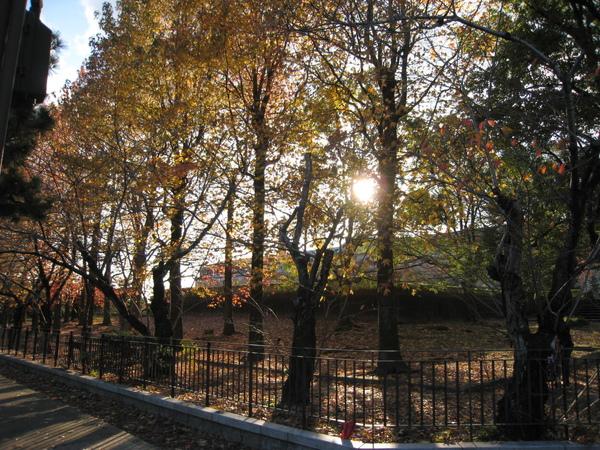 2008.11.26 京都--南禪寺 (44).JPG