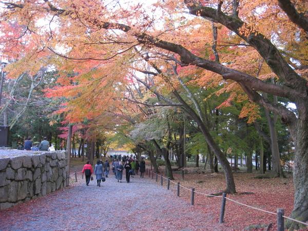 2008.11.26 京都--南禪寺 (7).JPG