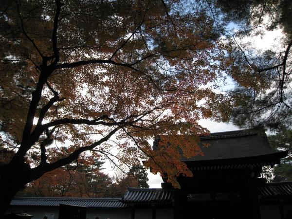 2008.11.26 京都--南禪寺 (39).JPG