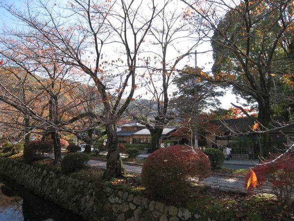 2008.11.26 京都--哲學之道 (8).JPG
