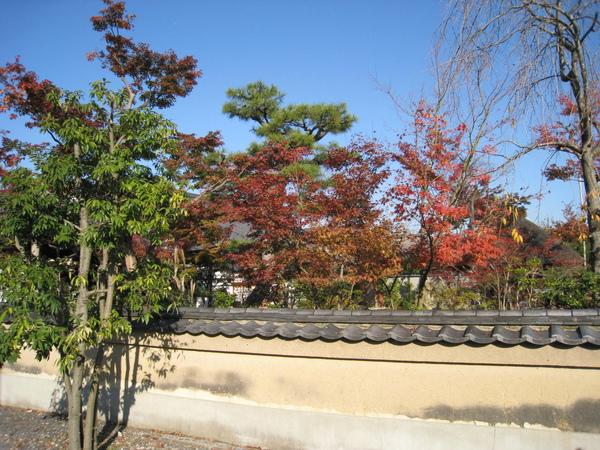 2008.11.26 京都--高台寺--天滿宮 (23).JPG