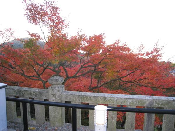 2008.11.26 京都--清水寺 (35).JPG