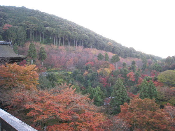 2008.11.26 京都--清水寺 (41).JPG