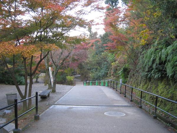 2008.11.26 京都--清水寺 (131).JPG