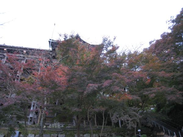 2008.11.26 京都--清水寺 (144).JPG