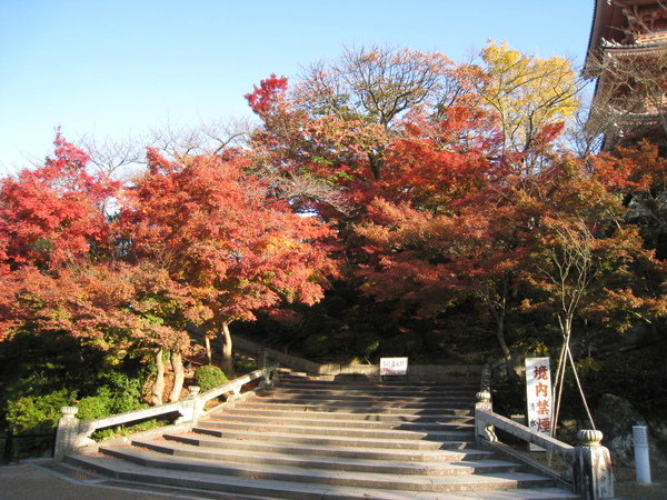 2008.11.26 京都--清水寺 (165).JPG