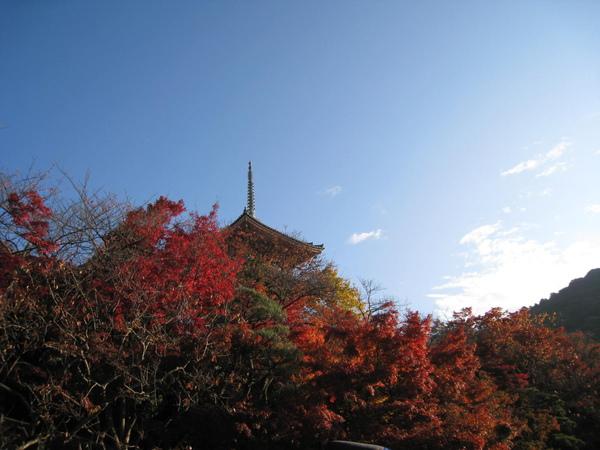 2008.11.26 京都--清水寺 (171).JPG