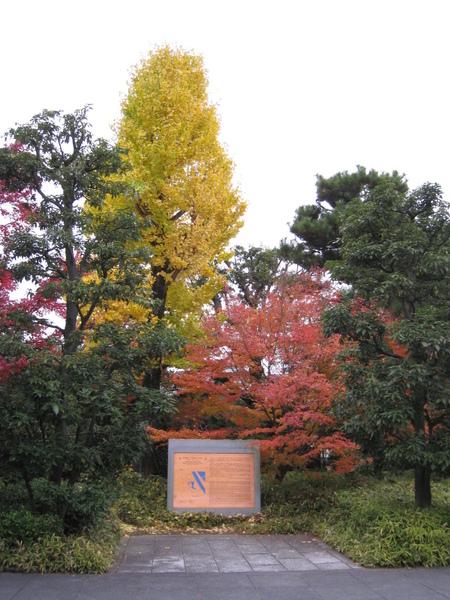 2008.11.27 京都--宇治--平等院 (19).JPG