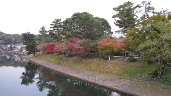 2008.11.27 京都--宇治-宇治川 (10).JPG