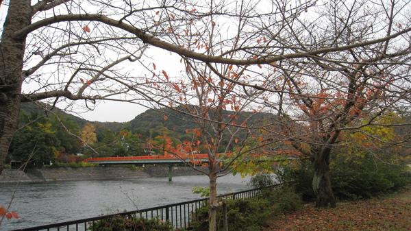 2008.11.27 京都--宇治-宇治川 (15).JPG