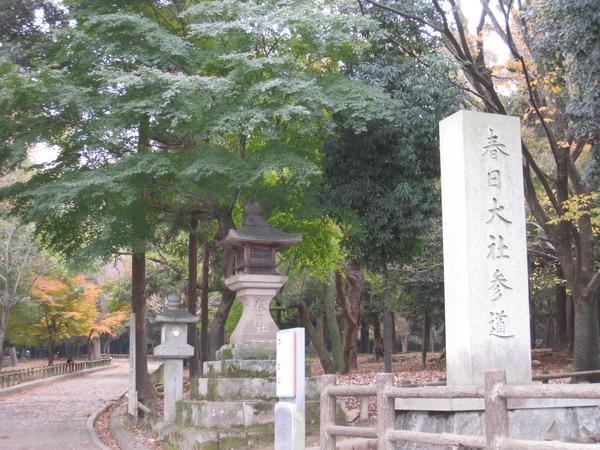 2008.11.27 京都--奈良--東大寺 (1).JPG