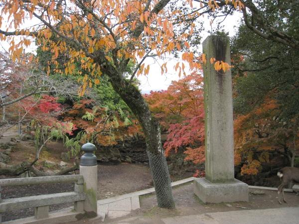 2008.11.27 京都--奈良--東大寺 (18).JPG