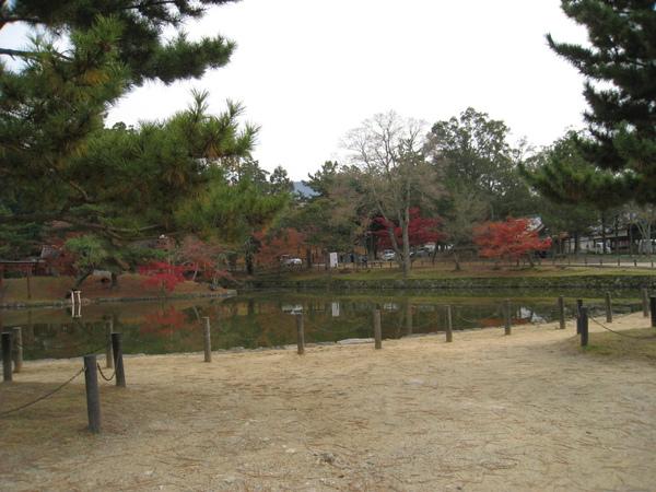 2008.11.27 京都--奈良--東大寺 (51).JPG