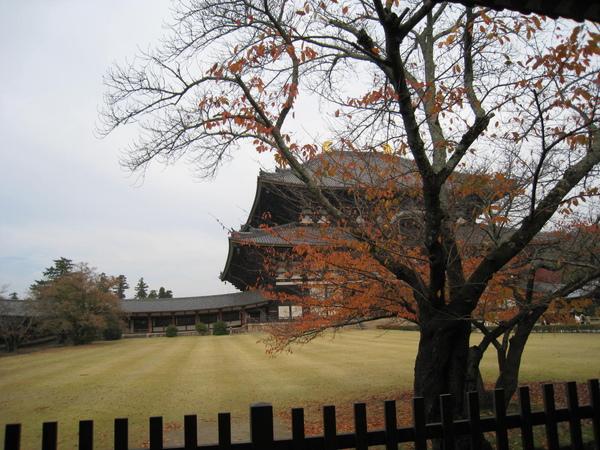 2008.11.27 京都--奈良--東大寺 (58).JPG