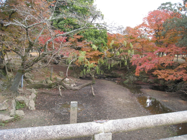 2008.11.27 京都--奈良--春日大社 (1).JPG