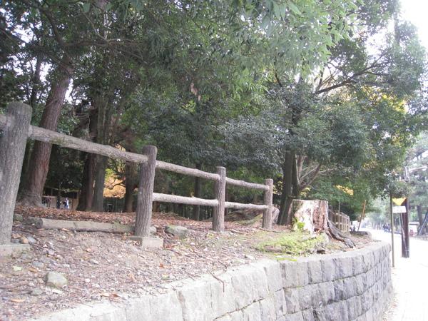 2008.11.27 京都--奈良--春日大社 (3).JPG