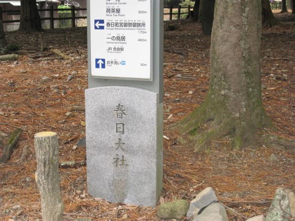 2008.11.27 京都--奈良--春日大社 (9).JPG