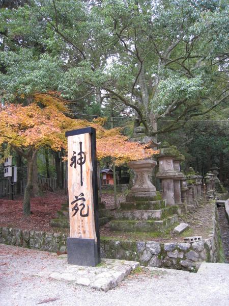2008.11.27 京都--奈良--春日大社 (15).JPG