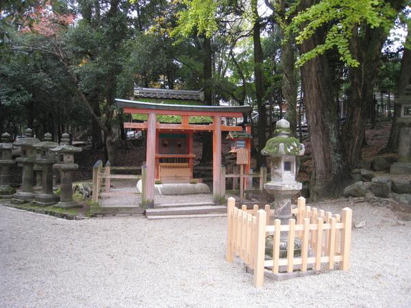 2008.11.27 京都--奈良--春日大社 (20).JPG