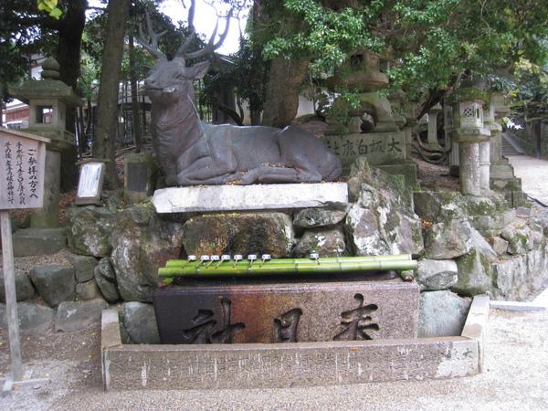 2008.11.27 京都--奈良--春日大社 (24).JPG
